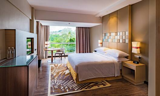 Accessible King Guestroom with Bed, Work Desk, Room Technology, and Outside View