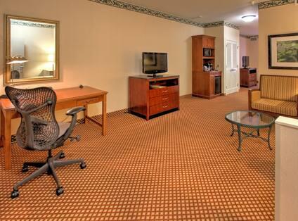 Suite Living Room HGI Williamsburg
