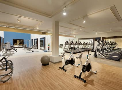 Fitness Center With TV,  Cardio Equipment, Exercise Ball, Large Mirrors, Aerobic Stepper, Weight Balls, and Free Weights