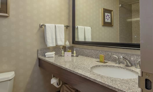 Guest bathroom with vanity, mirror and toilet.