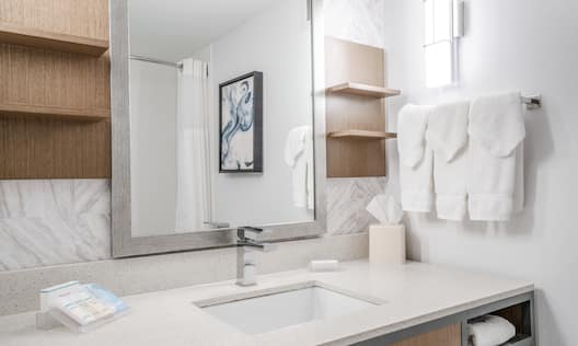 Bathroom vanity and amenities