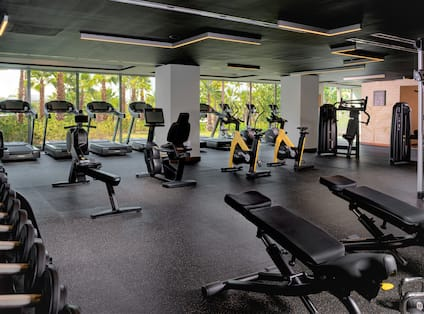 Fitness Center with Modern Equipment and Weights