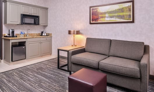 Suite Wet Bar Area and Sofa