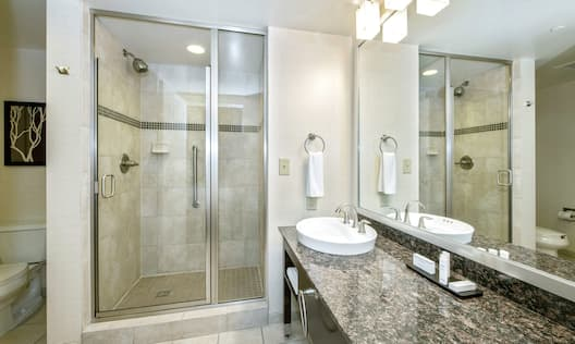 Suite Bathroom with Walk-in Shower and Vanity