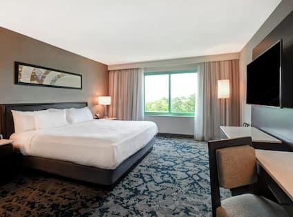 Single King Bed in Guestroom