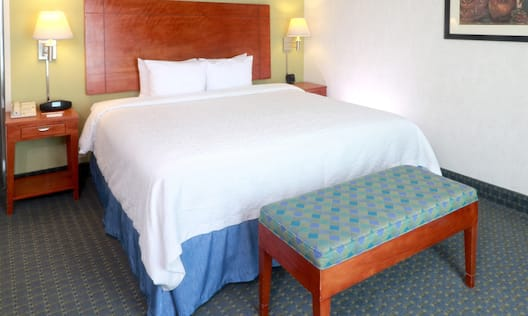 1 King sized Bed Guest Room