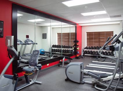 Fitness Center With Cardio Equipment, Large Mirror, Weight Balls, Free Weights, Bench, and Blue Stability Ball