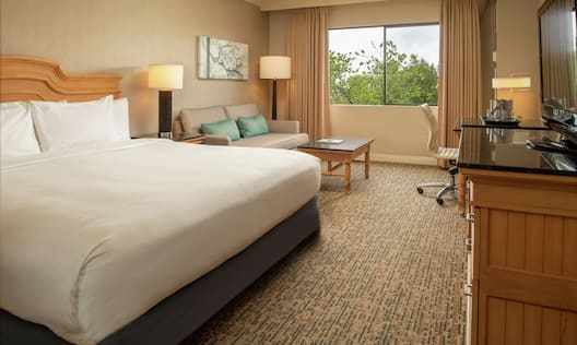 King Bed with Lounge area and Courtyard view