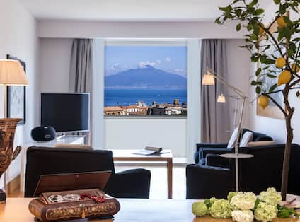 Suite Living Area with View