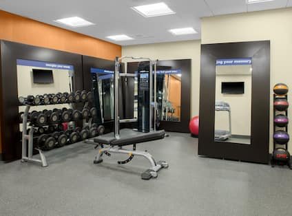 Fitness Center with Weight Bench and Dumbbell Rack