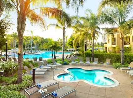 Outdoor Hot Tub and Pool Surrounded by Lounge Chairs and Palm Trees