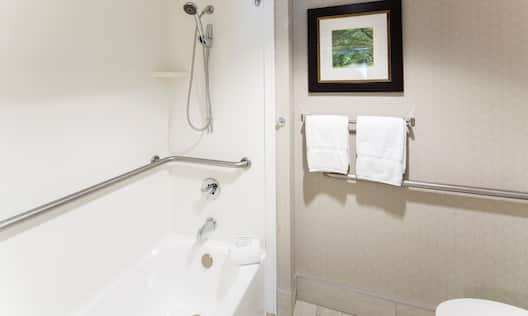 Accessible Bathroom Tub and Shower with Handrails