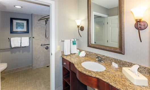 Accessible Bathroom Mirror Sink Vanity Area