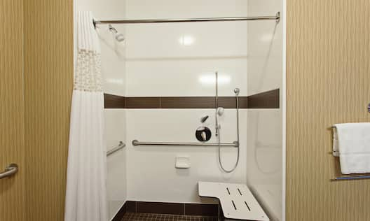 Guest Bathroom Roll-in Shower