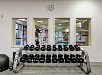 Fitness Room With Wall Art, Exercise Ball, Free Weights, Wall Clock Above Four Windows With View of Indoor Pool