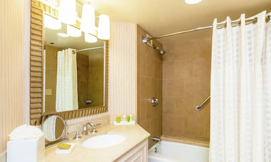 Accessible Guestroom Bathroom with Mirror, Vanity, Shower, and Bathtub