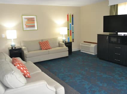 Suite Living Area with comfortable seating and TV