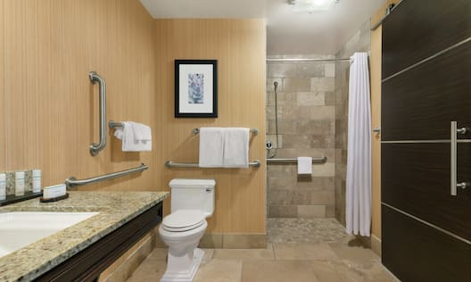 Accessible Guest Bathroom with Toilet and Roll-In Shower