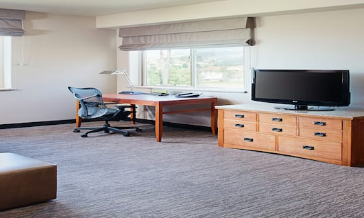Guest Suite Living Room with Work Desk, Television and Sofa