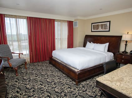 Guest Suite Bedroom with King sized Bed