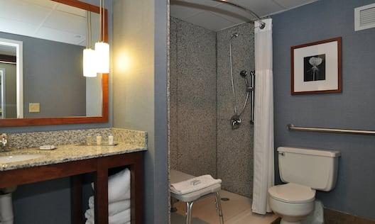 Guest Room Bathroom - Shower & Vanity