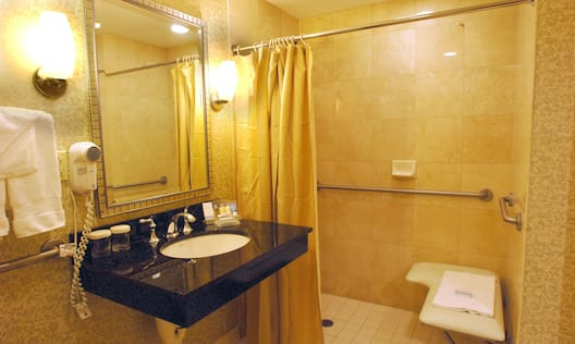 Accessible  Bathroom, Roll-in Shower