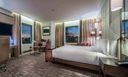 King Deluxe Room with Park View