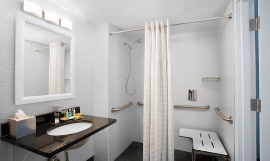 Guest Bathroom Mirror, Sink and Roll-In Shower with Bench and Handrails