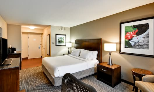Guest Room with a King Bed