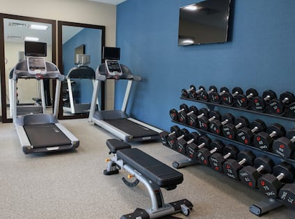 Fitness Center with weightbench and weights