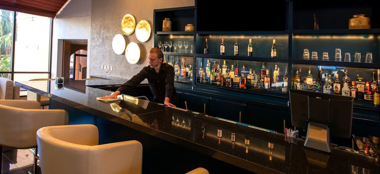 Bartender at Hotel Bar