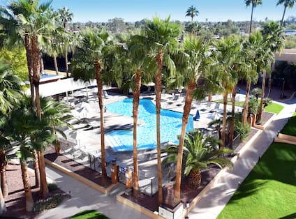 Outdoor Pool Area Encircled by Palm Trees