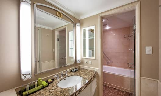 Twin Deluxe Premium Bathroom with Sink, Mirror, and Bathtub