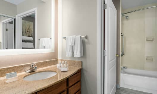 Guest Bathroom Vanity and Tub/Shower